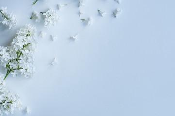 White Liliac Wallpaper