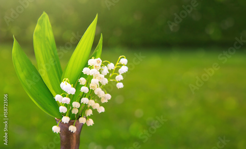 Fotobehang Lelietjes van dalen Lily of the valley bouquet in vase.