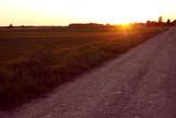 Bright orange sunset over sandy road