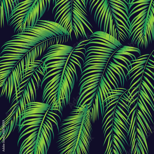 summer-palm-leafs-background-texture
