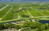 Orchards and fields in the delta of the river Neretva, Dalmatia, Croatia - 158763382