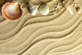 Sea shells beach background