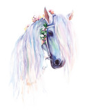 Fototapety The blue horse with flowers in the mane. Original watercolor painting.