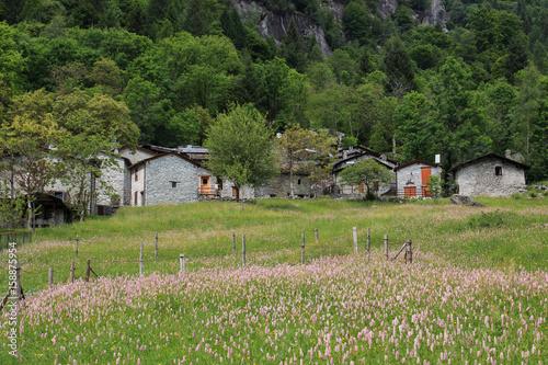 case in pietra in Val di Mello Poster