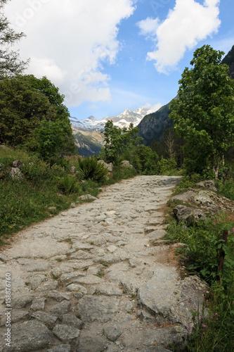 sentiero in Val di Mello Poster
