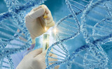 Testing of DNA molecules . - 158894365