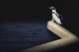 Penguin's delight artwork