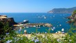 Vernazza Harbor on Italy's Cinque Terre coast viewed from above