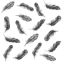 Feather Pattern