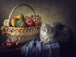 Fruit still life with kitten