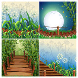 Four nature scenes with wooden bridge