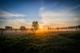 Sun over the Fog