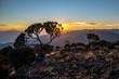 Quadro Mount Meru view from Kilimanjaro Machame route