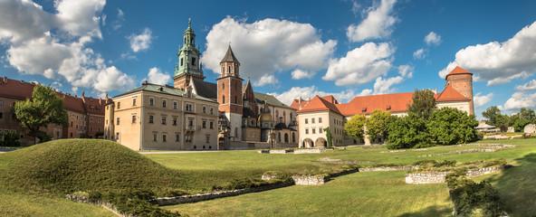 panorama Wawelu katedra Kraków