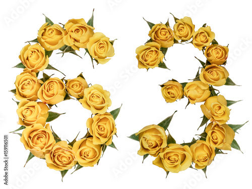 Poster Arabic numeral 63, sixty three, from yellow flowers of rose, isolated on white b