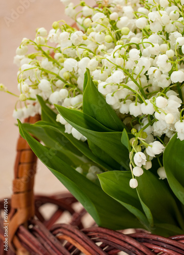 Fotobehang Lelietjes van dalen Flower lily of the valley closeup in a basket