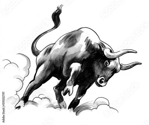Black bull - 159202797