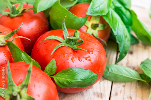 Heap of fresh ripe organic tomatoes with water drops scattered on wood kitchen table, green basil, natural light, healthy diet, mediterranean style, copy space - 159210596
