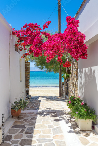 Fototapeta Typical Greek narrow street with summer flowers and view over sea. Naxos island. Cyclades. Greece.