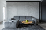 Living room with gray sofa - 159228503