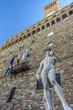 Quadro Statue of David in front of the Palazzo Vecchio