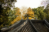 Roof of a Chinese temple in autumn