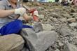化石の発掘調査をする人