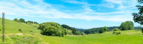 Wiese - 159261562