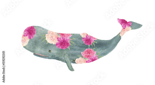 Watercolor painting sperm whale with peony flowers. Artwork for prints, greeting cards - 159292301