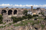 Roman Forum - Rome - Italy poster