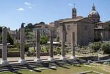 The Roman Forum - Rome - Italy poster
