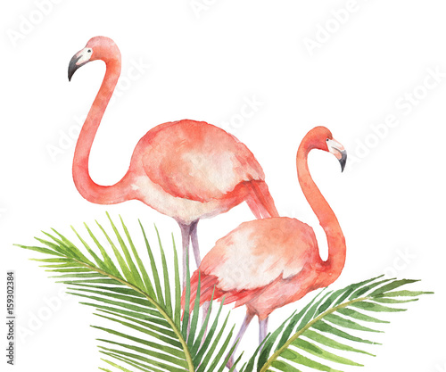 Watercolor card of tropical leaves and the pink Flamingo isolated on white background. - 159302384