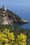 Coastline of Sardinia - Italy poster