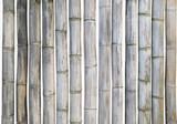 Dry Bamboo stems sticks isolate set on white background