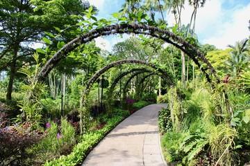 Giardino Botanico di Singapore