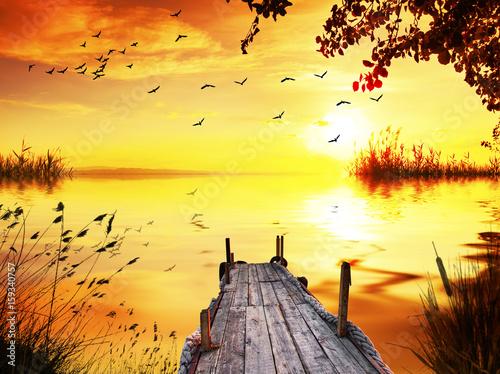 Keuken foto achterwand Geel embarcadero entre las plantas del lago