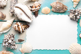 Marine summer postcard. Seashells on turquoise wooden boards in the sand on the beach - 159348743