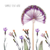 Pressed and dried flowers background - 159348985