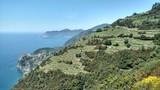 Winnice w górach i morze