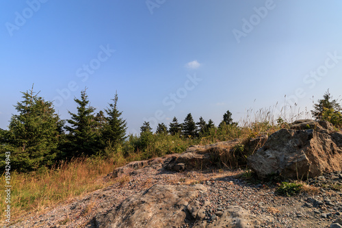 Felsige Landschaft im Harz Poster