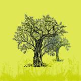 Olivenbäume auf oliv Illustration