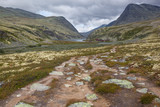 Mountain road through tundra to wooden tourist houses in Rondane National park, Norway