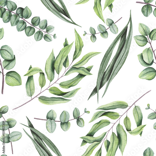 Seamless Pattern of Watercolor Green Leaves and Eucalyptus - 159457309