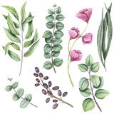 Botanical Set of Watercolor Herbs and Flowers - 159457752