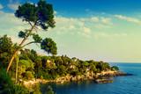 Sea coast in summer, Italy. Seascape nature.