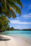 Paradise tropical beach and lagoon in Moorea Island - 159492313