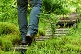 Mann läuft auf einen hölzernen Pfad durch den Wald