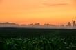 Sunrise on Foggy Farm Field