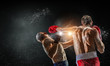Box fighters trainning outdoor . Mixed media - 159546774
