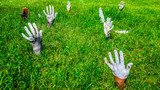 Sculptures of the hands sticked out of the ground  in the park on Yelagin island. St.Petersburg, Russia